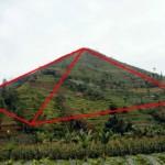 Foto Piramida Garut 1 150x150 Foto Polwan Tercantik